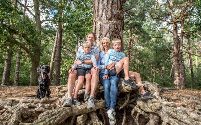 Family Shoot in Oxshott Woods